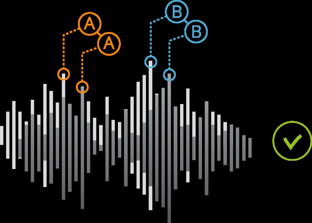 voice biometry